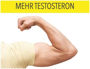 mehr-testosteron